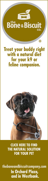 Bone and Biscuit Dog food banner ad by bannerite.com